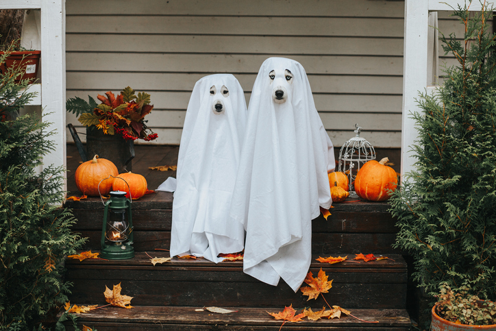buying a home in the fall perks